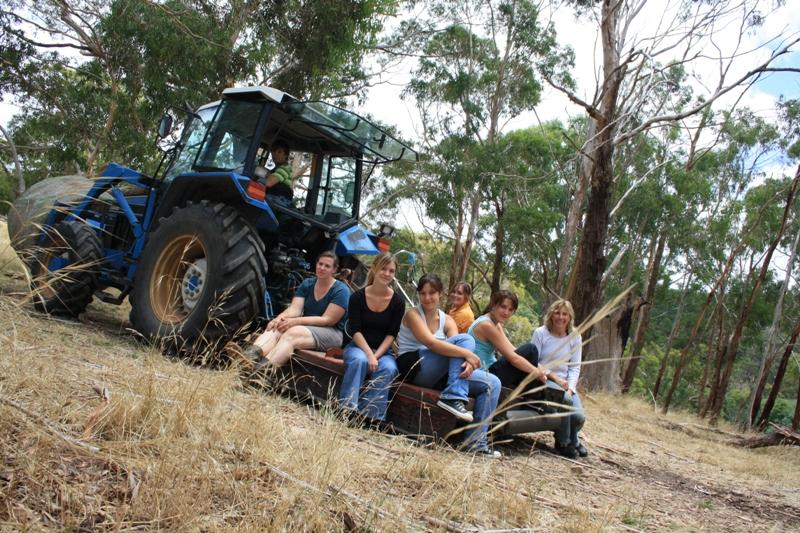 2009 December Tractor work Simon (Ger), Els (Bel), Claire (Fra), Florence (Fra), Manon (Fra), Anne (Ger) and Ruth
