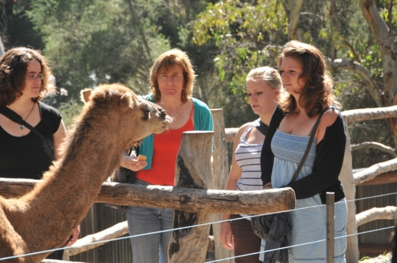 2011 April Marieanne (Bel), Ruth, Yael (Swiss) and Katherin (Ger) a day out to Gorge Wildlife Park at Cudlee Creek