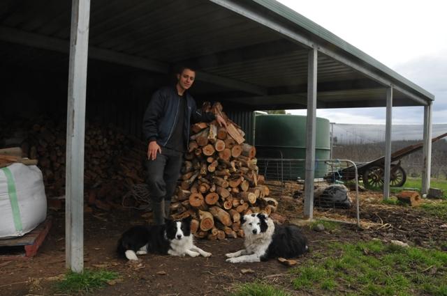 2012 July Espen (Dane) stacking firewood