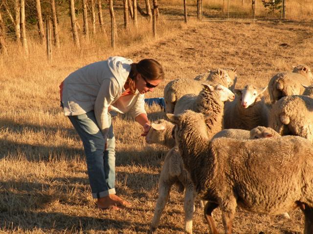 2013 January Jorieke with the sheep