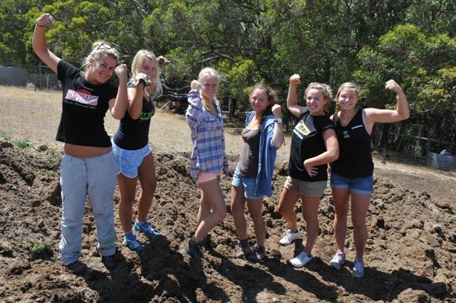 2014 January Nofwenn(Fra) Maeva(Bel) Jessica(Ger) Laura(Ger)   Adeline(Bel)  Emilie(Bel) collecting rabbit poo for the organic veggie patch